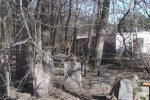 Zapyškio žydų kapinės