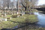 Žaliakalnio žydų kapinės